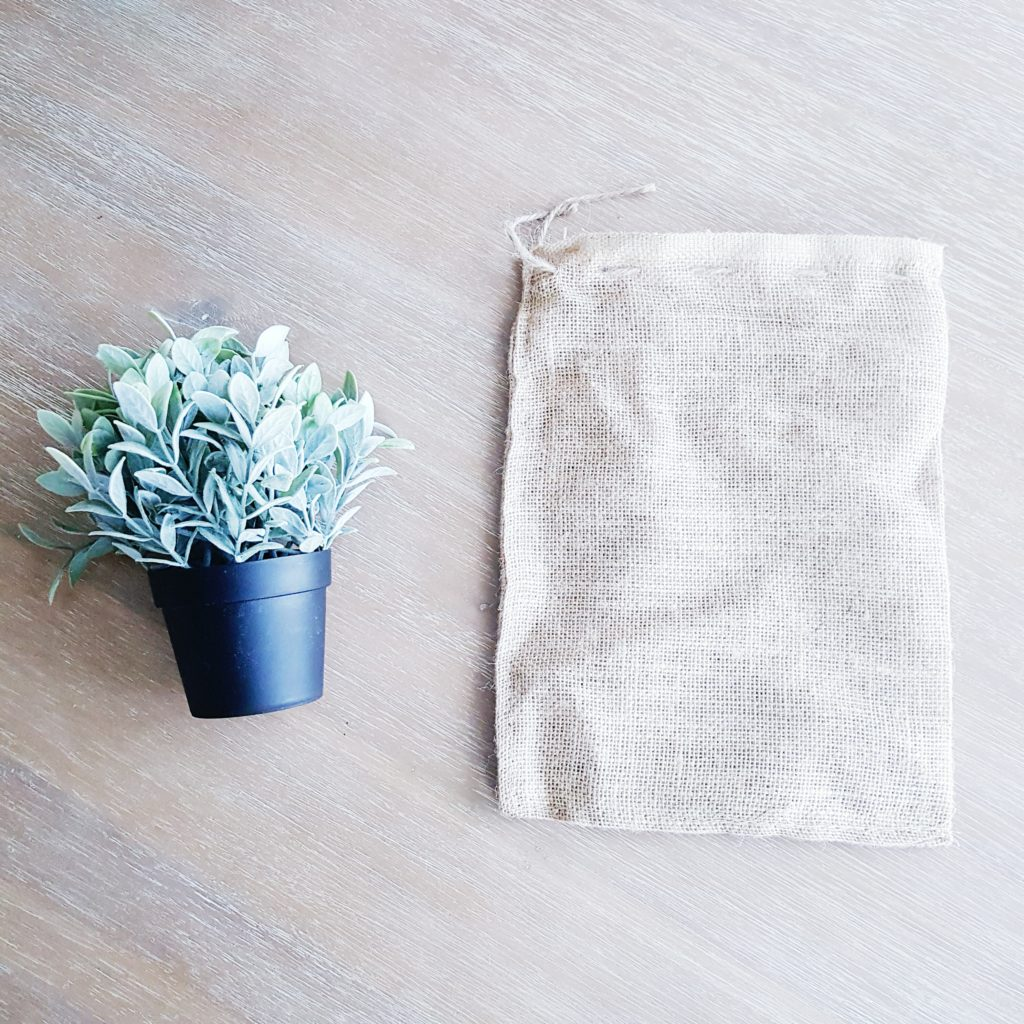 Plant Wrapped in Burlap Sack