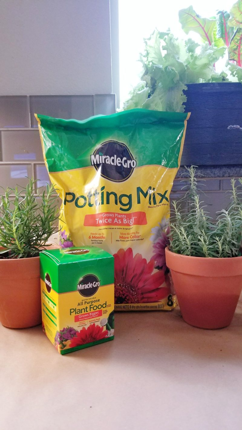 miracle grow soil miracle potting mix miracle gro plant food bonnie plants walmart bonnie plants how to make an herb garden in the kitchen DIY floating plant wall