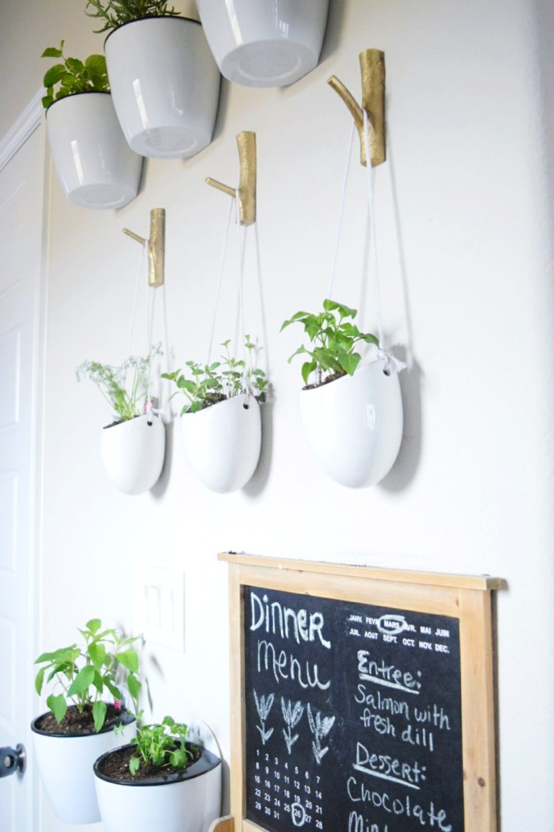 How to make a floating plant wall herbs and vegetables kitchen plants hanging vase kitchen decor bonnie plants miracle gro at walmart werethejoneses.com