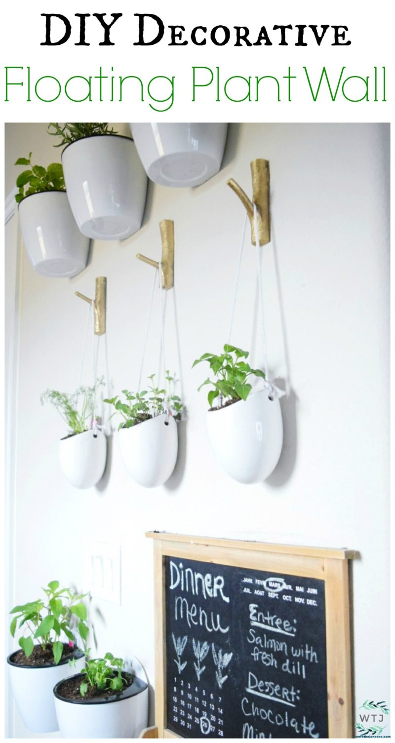 DIY Decorative floating plant wall indoor plant wall decorate wall with herbs and vegetables floating plants werethejoneses.com