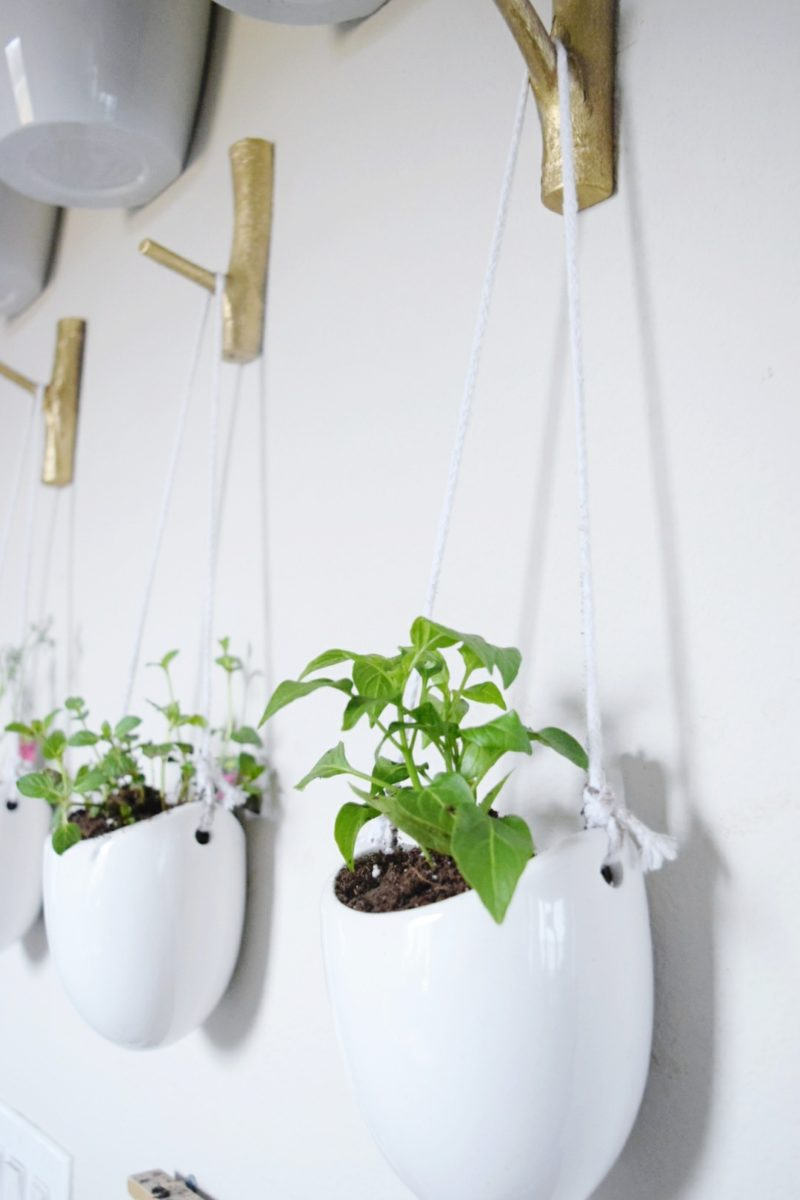Floating plant wall DIY plant containers hanging plant containers hanging vases miracle gro soil bonnie plants