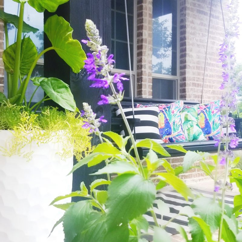 front porch swing with pillows and tropical flowers