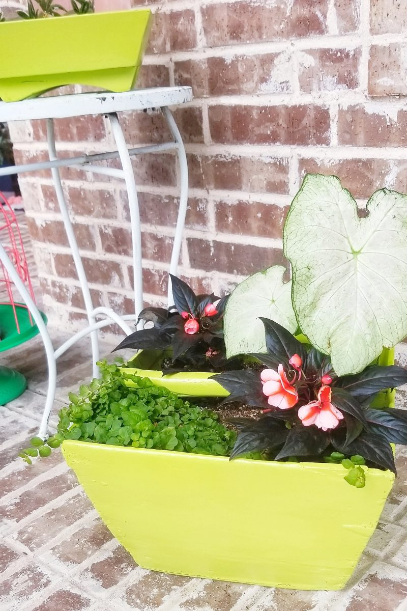 bright and colorful front porch plants and decor