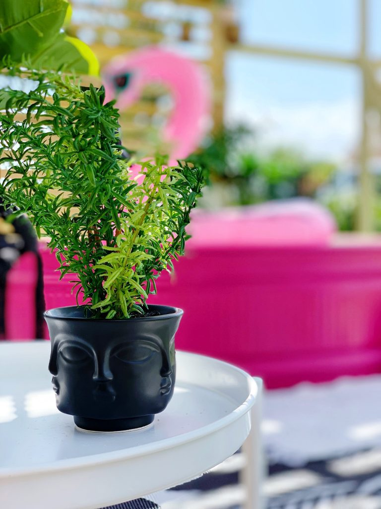 faux plant in pot with faces on outdoor deck with pink stocktank pool