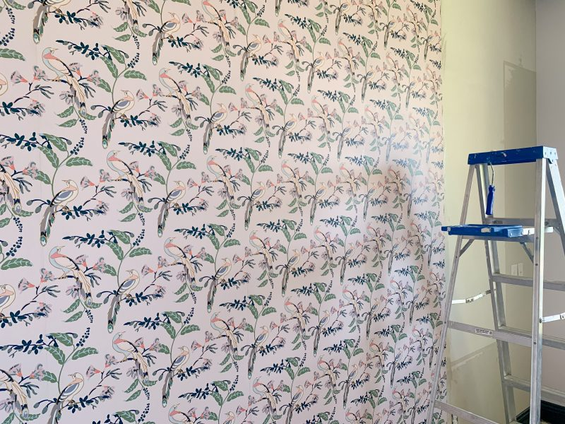 milton and king bird of paradise pink lady wallpaper in office makeover design
